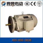 Quality Cast Iron Aluminum Electrical Induction Motor IP54 / Induction AC Motor 50Hz / 60Hz wholesale