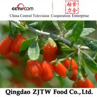 Quality Favorites Compare Goji Berry Dired Fruit wholesale