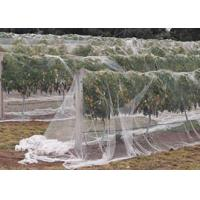 Quality Bird Net(Schatten) wholesale