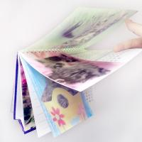 China 2015 customized spiral 3d lenticular desk calendar with notepad on sale