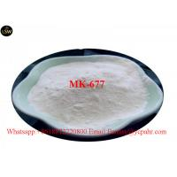 Quality Sarms MK 677 Ibutamoren For Muscle Building Pharmaceutical Raw Material  CAS 59752 10 0 White Powder wholesale
