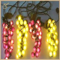 Outdoor String Lights Grapes : decorative outdoor string lights images - decorative outdoor string lights photos