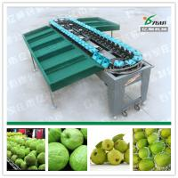 Quality Guava sorting machine/Fruit sort machine factory wholesale