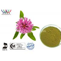 Quality Natural Isoflavones Red Clover Extract Trifolium Pratense Powder For Women Supplement wholesale