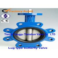 China Cast Iron Wafer Lug Butterfly Valve / Tapped Manual Gear Operated Butterfly Valve on sale