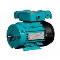 Cheap Elektrim High Performance Motors for sale