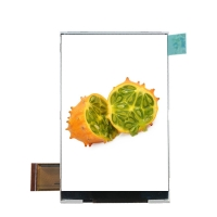 Quality Customized MIPI Interface 320*480 Tft Display Touch Screen wholesale