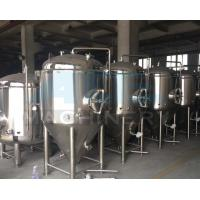 Quality China Manufacturer Supply Beer Fermenter Provider Stirred Tank Fermenter Canned Beer Produce Equipment wholesale