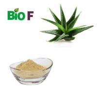 China Pure Powdered Herbal Extracts  Aloe Vera Extract Powder 10%-60% Aloin on sale