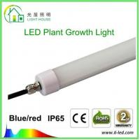 Quality Hydroponic LED Tube Grow Lights T8 With Rotatable End Cap , 120 Degree Angle wholesale