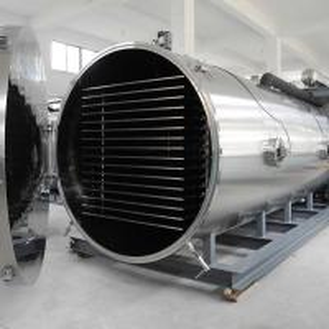 China Low Energy Consumption Fruit Lyophilizer Commercial Vacuum Freeze Drying Machine on sale
