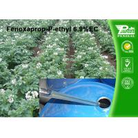 Quality Post Emergent Selective Herbicide Powder Fenoxaprop-P-Ethyl 6.9% EC wholesale