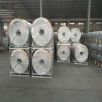 Quality 3000m 1 inch Chicken Wire Netting Hexagonal Wire Netting Galvanized wholesale