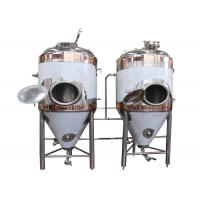 Quality DYE Full-Automatic Conical Beer Fermenter With Vacuum Relief Valve wholesale