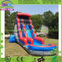China Durable Inflatable Slide with Pool, Water Slide Park, Giant Hippo Slide for Water Park on sale