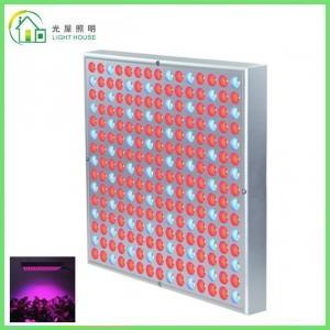 Quality Red LED Indoor Garden Lights / Energy Efficient LED Flowering Grow Lights , AC 85~265V wholesale