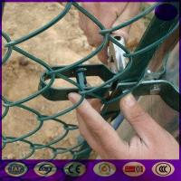 China Plastic/ vinyl coated chain link fence on sale