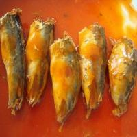 Quality Canned Mackerel in Tomato & Chilli Sauce Cm-006 wholesale