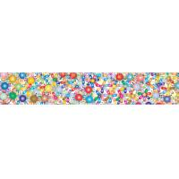 Quality 2x12.25 Inches Rulers 3D Lenticular Printing Service With Multicolored Spinning Wheels wholesale