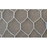 China phoenix wire cloth plastic coated wire mesh fencing reinforcing mesh on sale