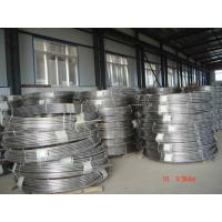 Quality 304L Stainless Steel Welded Pipes , Brush A312 Coil Pipe wholesale