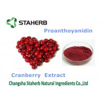 Quality Cranberry Extract Organic / Natural Antioxidant Supplement Violet Fine Powder wholesale