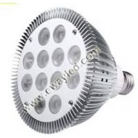 Quality 12X2W PAR38 LED Lamp wholesale