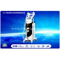 Quality Female Vertical Cryolipolysis Equipment , Professional Weight Reduction Machine wholesale
