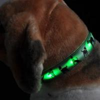 Quality Adjustable LED Pet Collar (BC905) wholesale