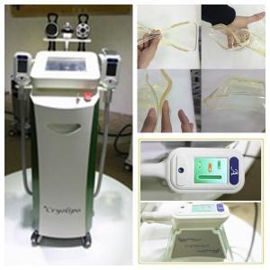 Quality dual cryo handles work together coolshape criolipolysis freezing fat slimming machine wholesale