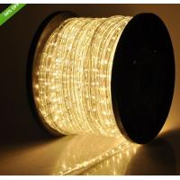 China 2 wire led building decorative light warm white led rope lights on sale