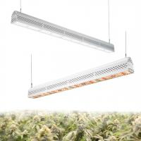 China Anti Heavy Moisture Horticulture Grow Lights , Indoor And Outdoor Led Grow Lights on sale