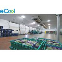 China Fresh Keeping Cold Storage Of Fruits And Vegetables With Package / PUR Sandwich Panel Assembling on sale
