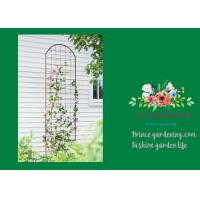 Quality Metal Wall Garden Flower Trellis Powder Coated For Climbing Flowers wholesale