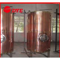 Cheap DYE Semi-Automatic Mini Bright Beer Tank For Brewery 1 - 3 Layers for sale