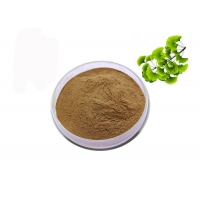 China CAS 90045-36-6 Organic Dry Leaves Ginkgo Biloba Extract Powder on sale