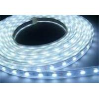 Quality High Brightness Waterproof Blue 3.5 W Flexible LED Strip Lights For Concealed Lighting wholesale