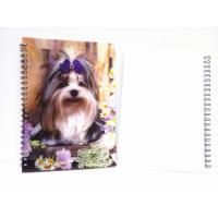 Quality Flip A4 , A5 , A6 Size 3D Lenticular Notebook Cover For Wrinting wholesale