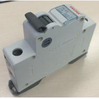Buy cheap MCB 1P 10A Household Circuit Breaker Panel mounting With Screw terminal from wholesalers