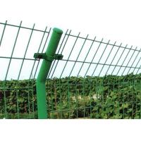 Quality double edge wires fence wholesale