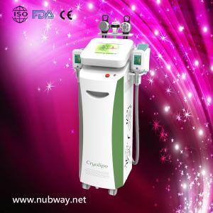 China Biggest Promotion!!! NUBWAY low price cryolipolysis cavitation slimming equipment on sale