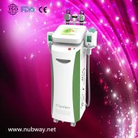Quality Super fast amazing result cryolipolysis fatness removal machine to lose weight wholesale