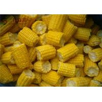 Quality Natural Organic Frozen Vegetables Frozen Sweet Corn / Baby Corn Contains No Cholesterol wholesale
