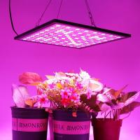 Quality 300x300mm Indoor Full Spectrum LED Grow Lights Dimmable With 3000K-6500K CCT wholesale