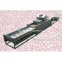 Quality Automatic Onion Selecting Cleaning and Sorting Machine wholesale