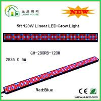 Quality IP44 High Brightness Linear Grow Lights For Indoor Plants , PPMA Cover wholesale