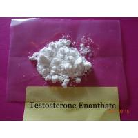 Quality Enanthate Testosterone Steroid Test E Powder CAS 315-37-7 White Crystalline Appearance wholesale