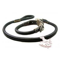 China leather dog leash for all sizes dogs on sale