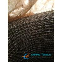 Cheap Stainless Steel Crimped Wire Mesh With Hole Size (double weave) for sale