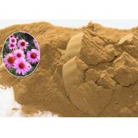 China Echinacea Purpurea Natural Plant Extract Powder Accelerating Wound Healing on sale